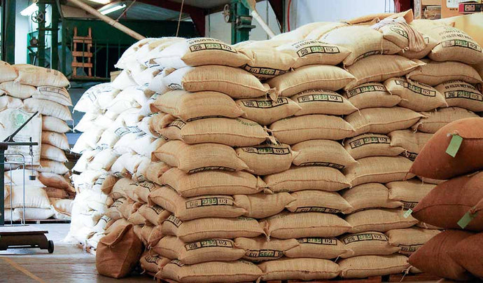Bags of organic coffee beans. Fair trade single origin coffee form Chiapas, Mexico.