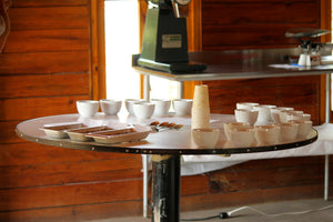 Coffee cupping in Chiapas, Mexico.