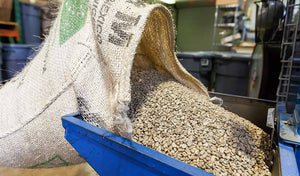 Large bag of organic coffee beans.