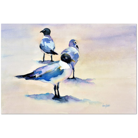 Wall Art Print on Canvas-Seagulls, Premium Canvas Gallery Wrap - Laurie Humble.com