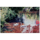 Wall Art Print on Canvas-Two Swans, Premium Canvas Gallery Wrap - Laurie Humble.com