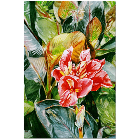Wall Art Print on Canvas-Cannas, Premium Canvas Gallery Wrap - Laurie Humble.com