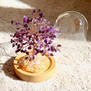 Amethyst Bonsai Tree with  Glass Cover - Catstone NYC