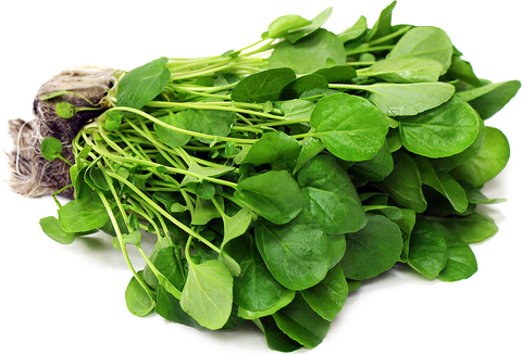 西洋菜 Watercress, 2.49/Bunch, Order by Bunch
