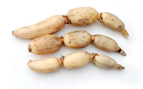 莲藕 Lotus Roots, 3.49/lb, Order by Pounds