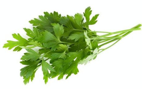 香菜 Cilantro, 1.99/Bunch, Order by Bunch