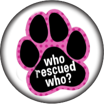 Who Rescued Who Glass Snap Charm