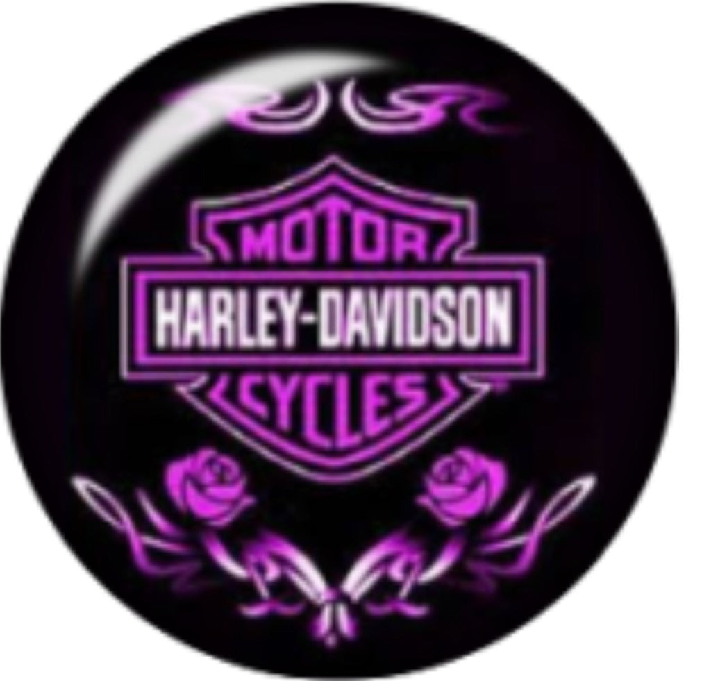 Harley Purple Glass Snap Charm