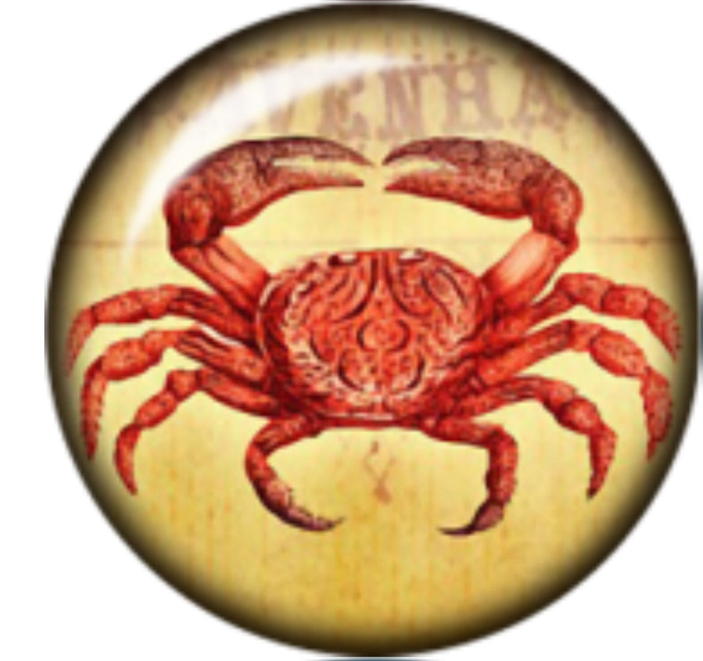 Rustic Crab Glass Snap Charm