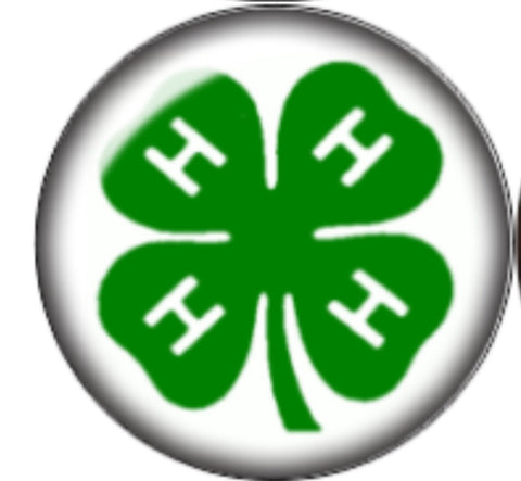 4H Symbol Glass Snap Charm