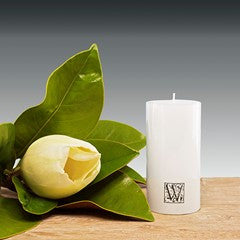50mm x 100mm pillar candle – White