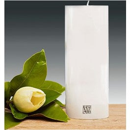 100 x 250mm Pillar Candle - white