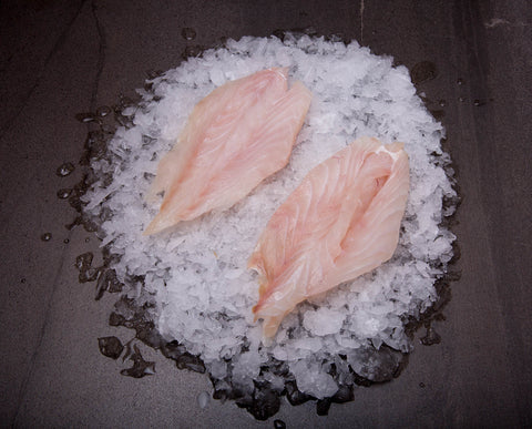 Goldband Snapper Fillet