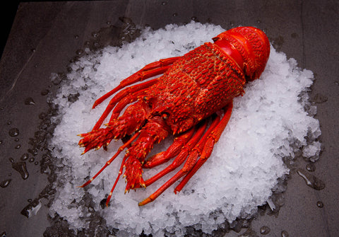 Southern Rock Lobster Cooked ($130/kg)