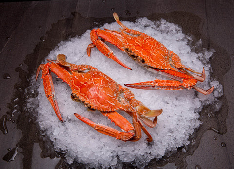 Blue Swimmer Crabs Cooked (Sand Crabs)