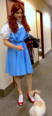 Dorothy and Toto leave Kansas