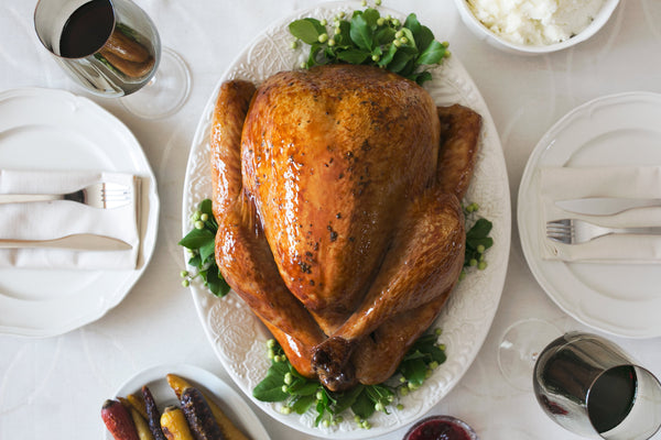 Turkey meat is safe and healthy but beware of giving hollow poultry bones that can splinter