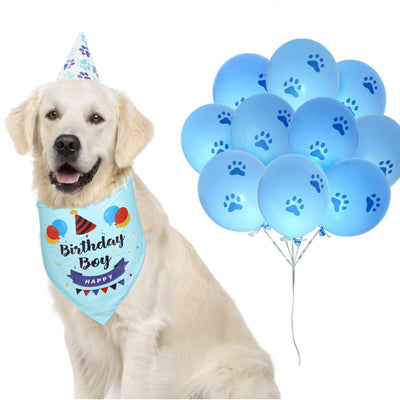 Dog with Happy Birthday Pet Bandanna Triangle Light Blue tied around neck with balloons