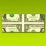 Magic Mis-Made Dollar Bills