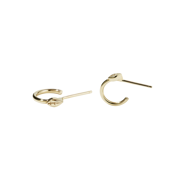 Meadowlark 9ct Gold Vine Hoop Earrings