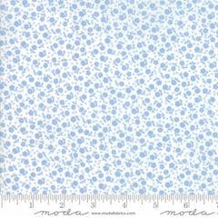 Guest Room Sky Flowers and Dots for Moda Fabrics