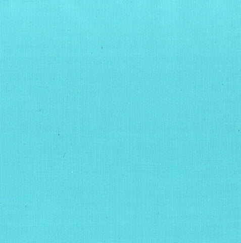 Painter's Palette Solid - Pale Aqua