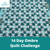 Image of 14 Day Ombre Quilt Challenge (May 4 - 15, 2020)