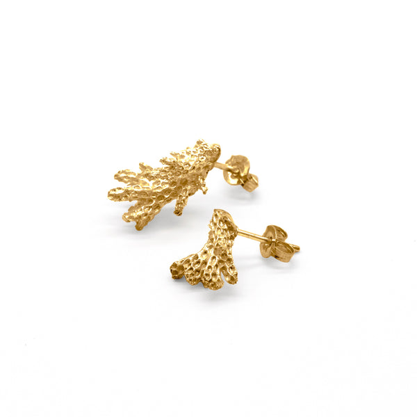 Baby Coral Earrings Gold Plated Sterling Silver