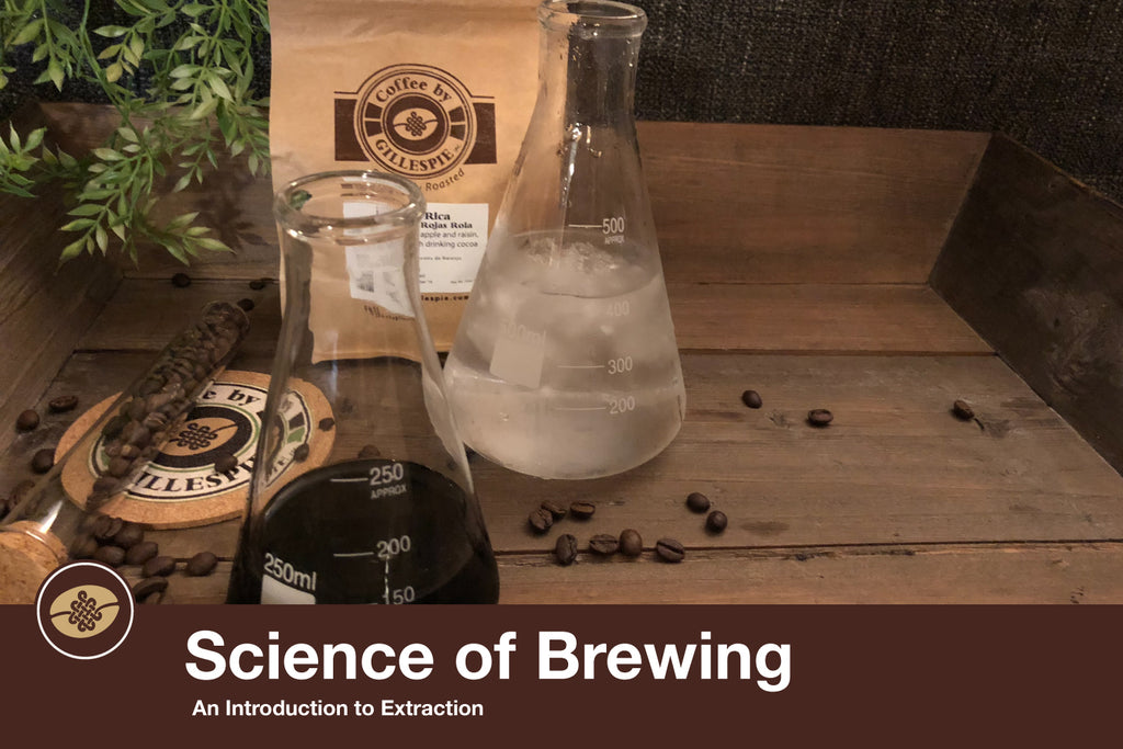 Science of Brewing: An Introduction to Extraction