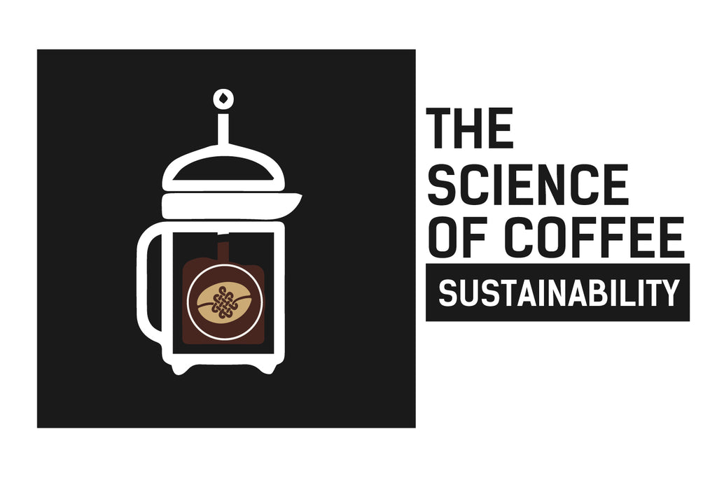 The Science of Coffee: Sustainability