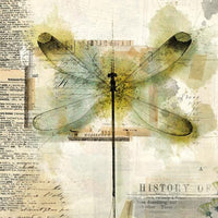 Dragonfly Paper