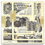 Vegetable Seeds Vintage 12x12 Paper