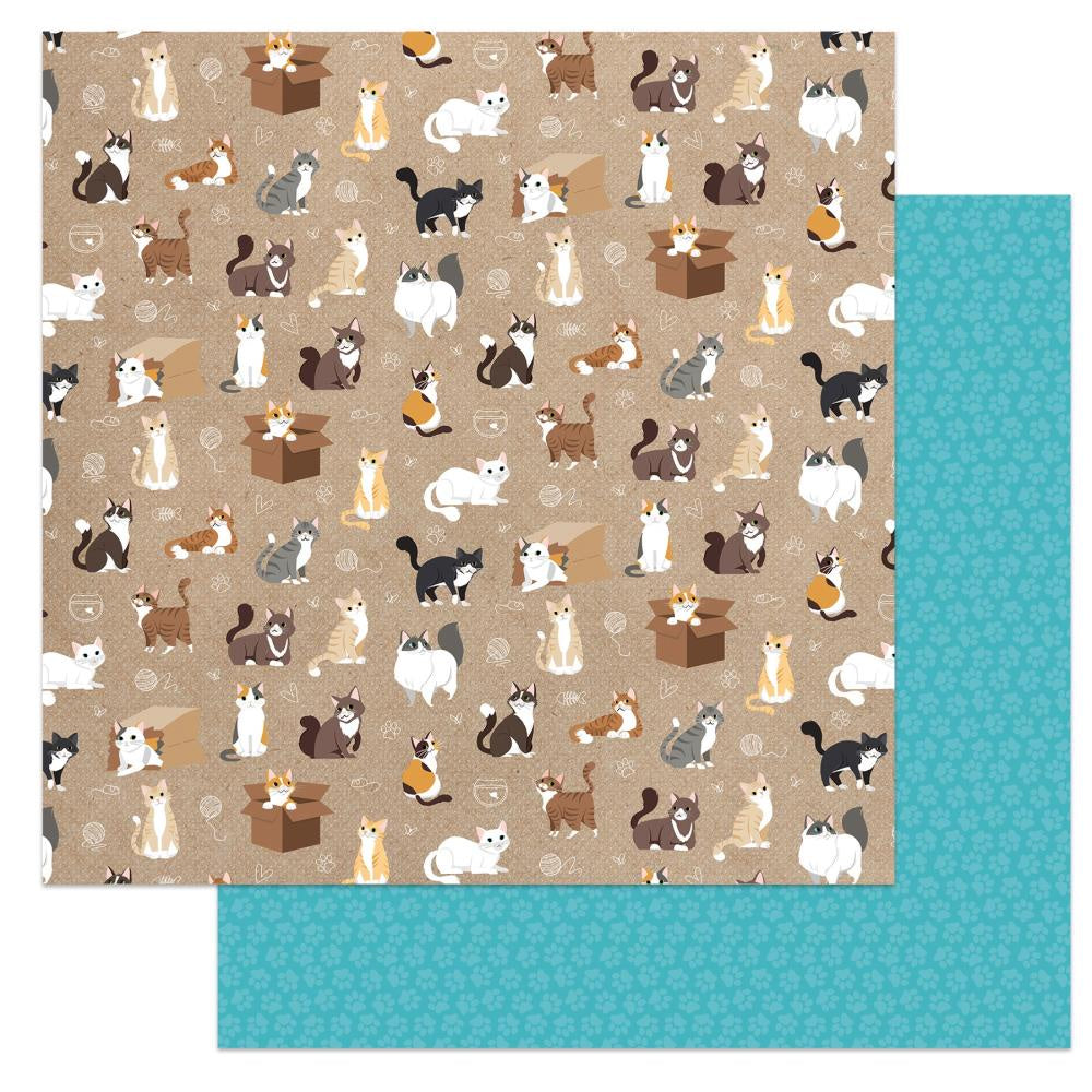Cat Lover Soft Kitty Paper