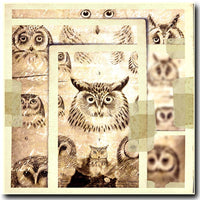 Layered Owls 12x12 Paper