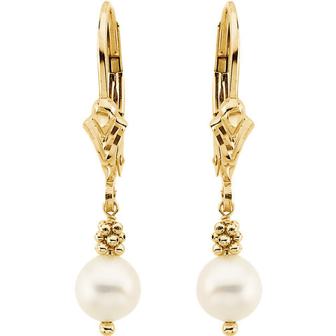 14K Yellow Gold Freshwater Pearl Leverback Earrings - Cailin's