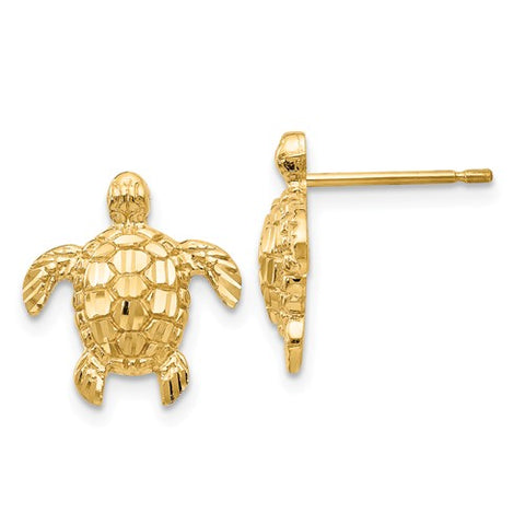 14K Yellow Gold Sea Turtle Post Earrings - Cailin's