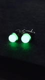 Stainless Steel Green Glow In The dark Earrings - Cailin's