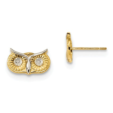 14K Yellow Gold Wise Owl Post Earrings - Cailin's