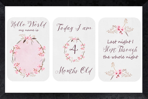 Milestone Cards - blossom & feather