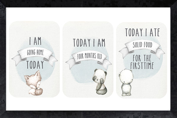 Milestone Cards - furry friends