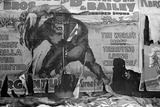 torn circus billboard showing a snarling gorilla holding a man over his head.