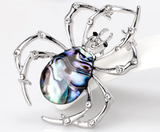 Spider brooch shell