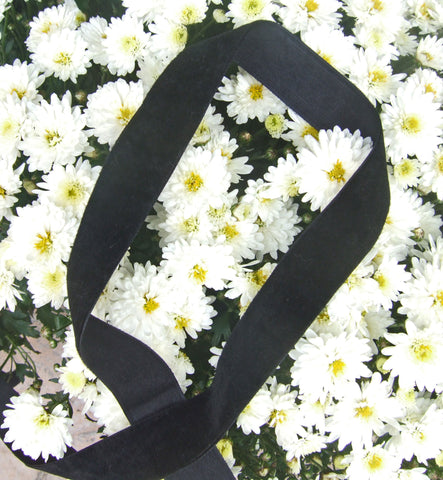 Single Face 1 Inch Velvet Ribbon. 25 Yards (Black, White...)