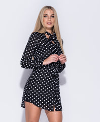 Polka Dot Print Shirt Dress