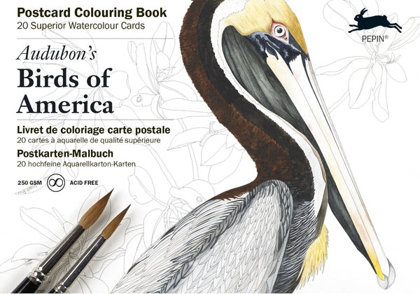 Postcard Colouring Book - Birds of America