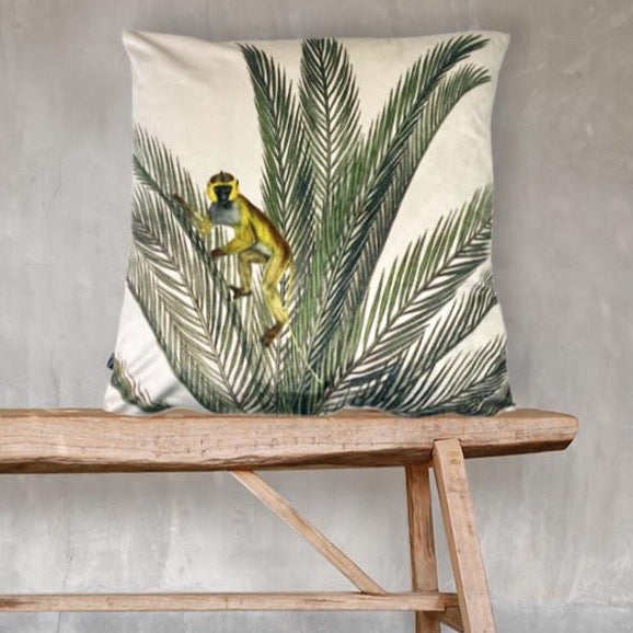 Monkey in Palm - Velvet Cushion 50 x 50