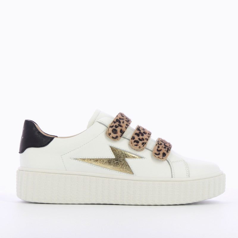 Leopard Velcro Trainers (Leather Upper), with Gold Flash & Black Heel