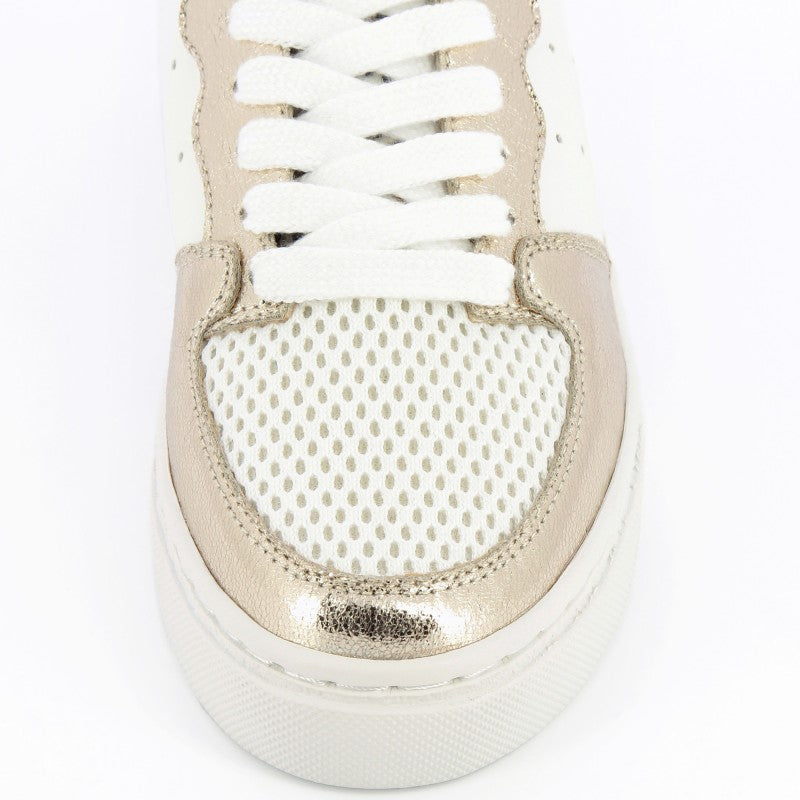 Blanc Lace Up Trainers with Leopard and Gold