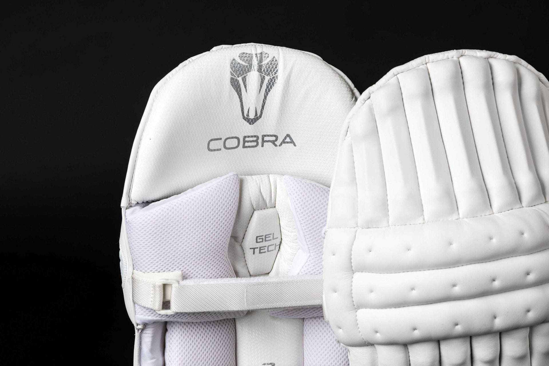 COBRA - PLAYERS Batting Pads