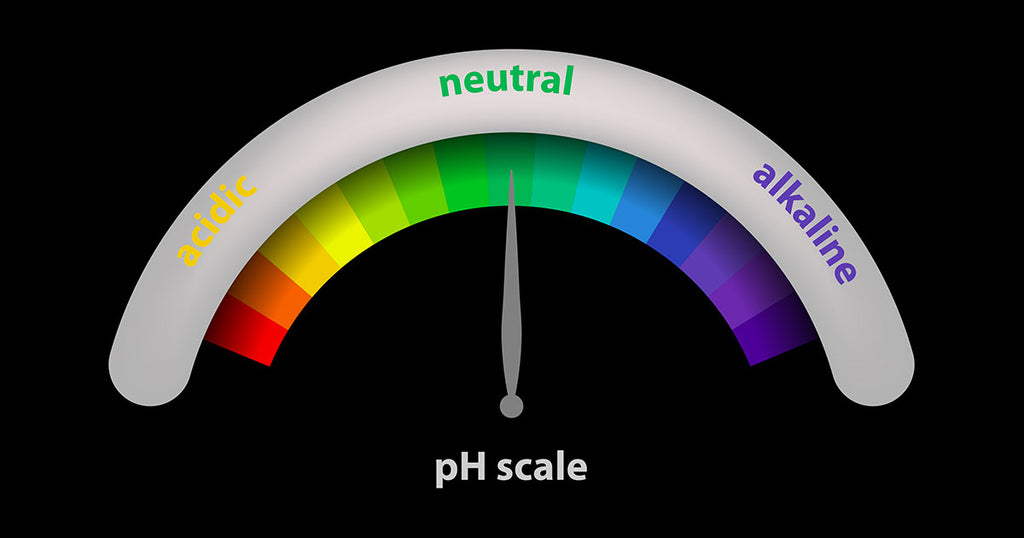 Understanding Alkaline and Acidity